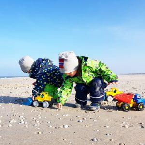 Alf und Ulf sammeln Muscheln am Nordstrand von Amrum