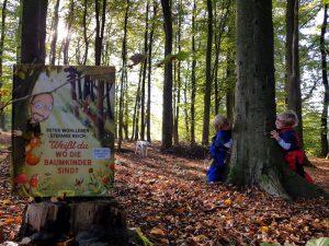 Alf und Ulf suchen die Baumkinder